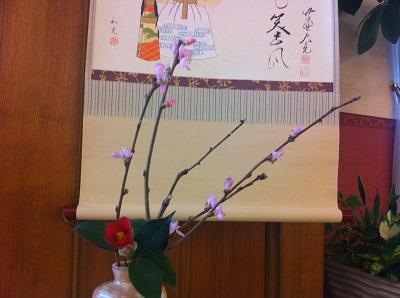yabutsubaki (1)400pxl.jpg
