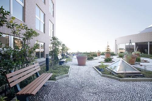 屋上庭園(小サイズ).jpg