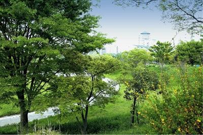 8の字公園.jpg